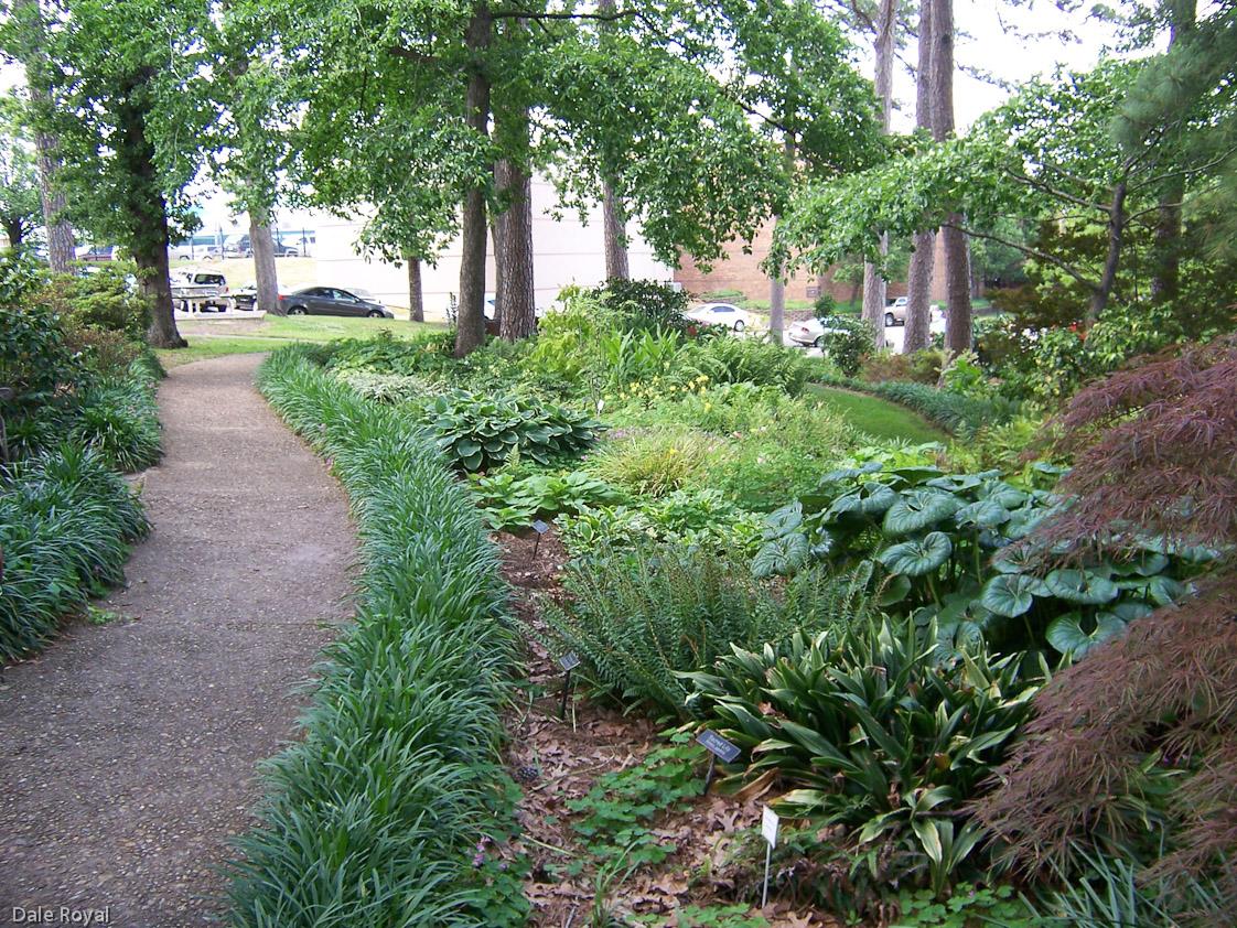 Image Result For Royal Garden